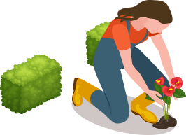 girl planting and bush icon